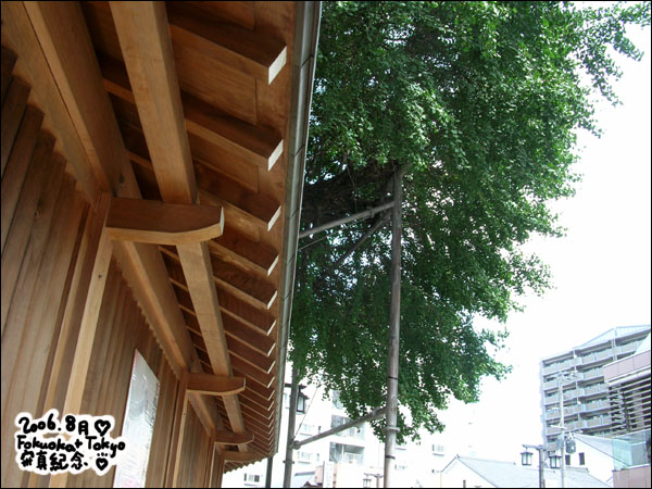 2006 日本福岡東京遊記 – 8/17 演唱會初日!