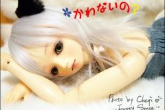 小圉的新裝w (20110713)