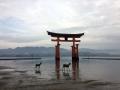 2017日本廣島出雲旅行 2017.11.30